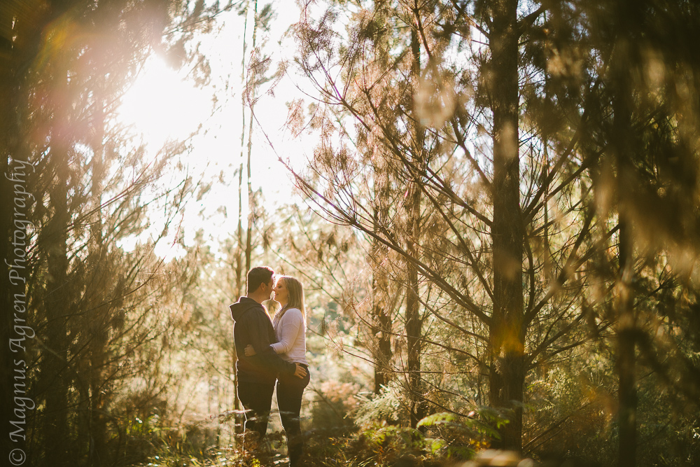 portrait photographer, southern highlands photographer, southern highlands wedding photographer, goulburn photographer, goulburn wedding photographer, penrose state forest, relaxed wedding photographer