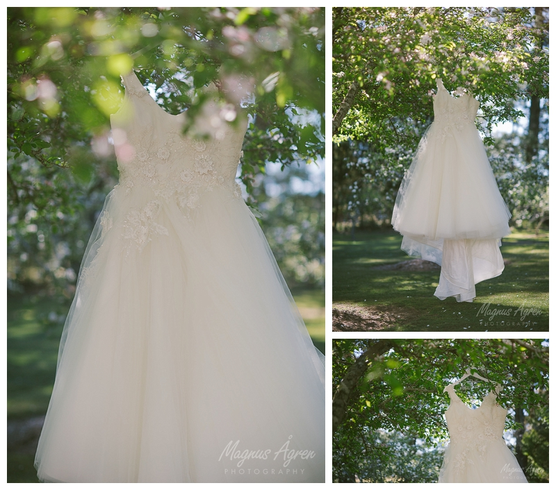 Atelier Rose dress at Sylvan glen, sylvan glen penrose, southern highlands wedding venue, southern highlands photographer, goulburn wedding photographer