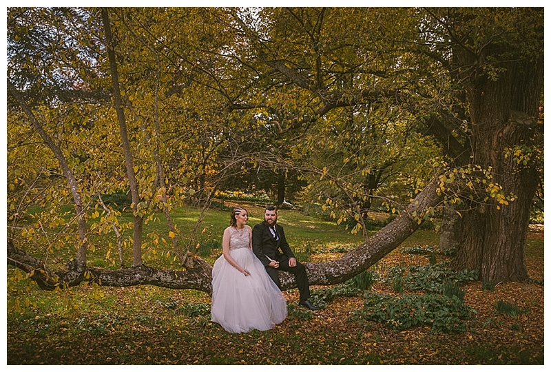 sutton forest, montrose berry farm, southern highlands wedding photographer, southern highlands photographer, country wedding photographer, farm wedding photographer, relaxed wedding photographer, southern highlands, southern highlands wedding, goulburn wedding photographer, goulburn wedding, bowral wedding photographer, most relaxed wedding photographer, at long last designs, at long last styling, montrose berry farm wedding, montrose berry farm photographer, sitting branch, autumn