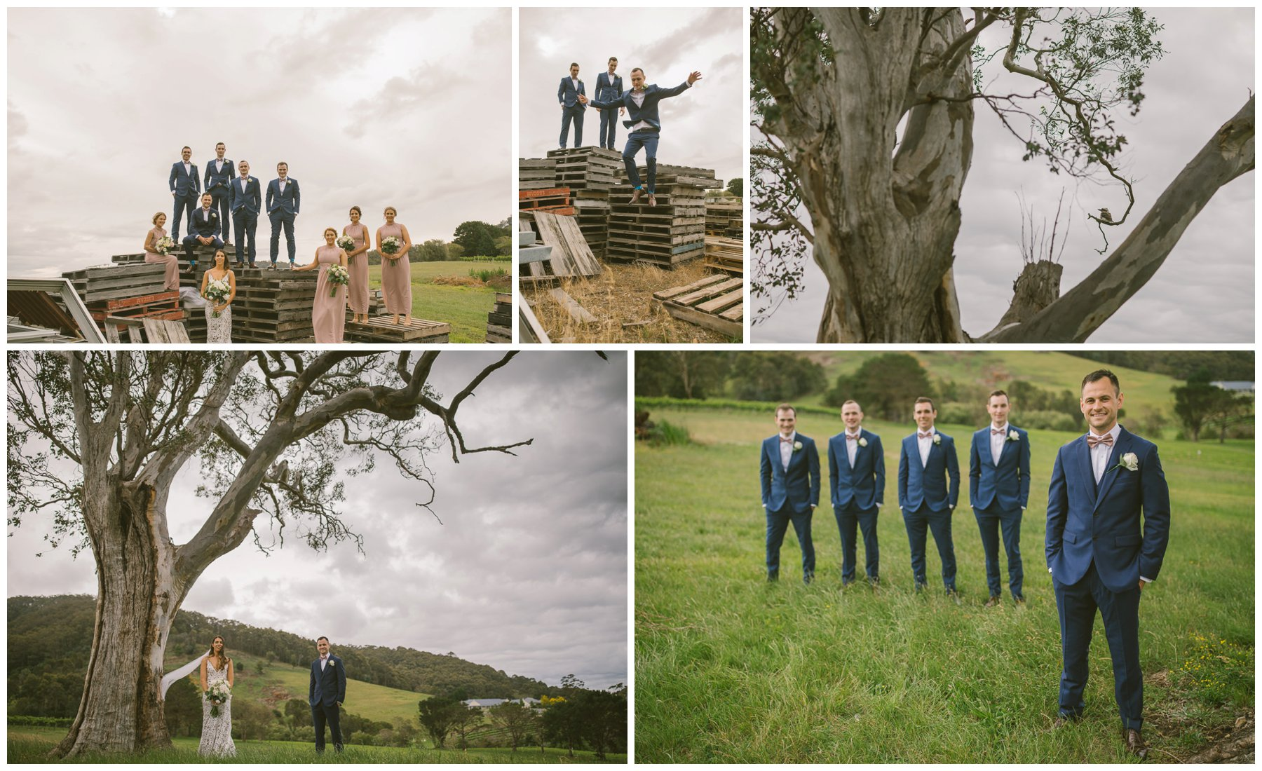 Patrick and Hollie, Coolangatta estate wedding, south coast wedding photographer, Southern Highlands wedding photographer, southern highlands photographer, farm wedding, vineyard