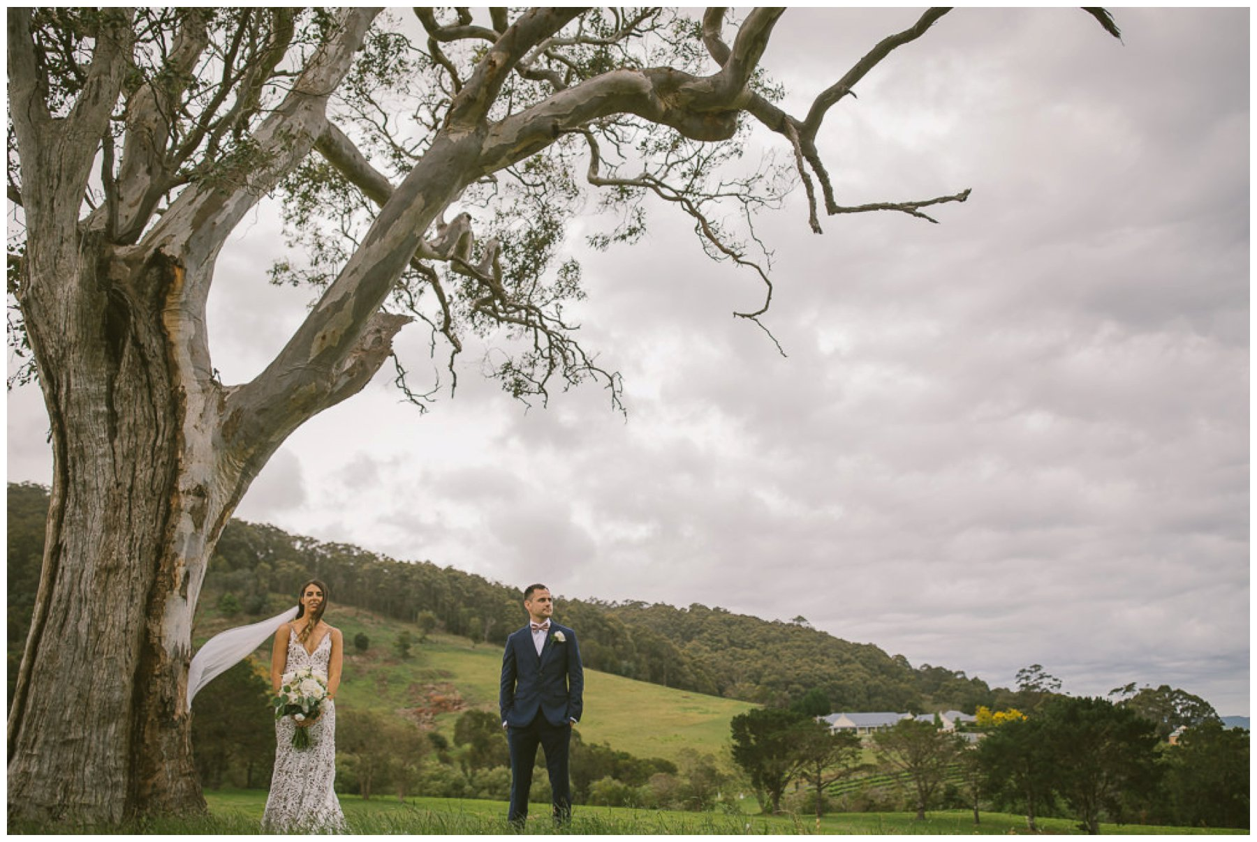 Patrick and Hollie, Coolangatta estate wedding, south coast wedding photographer, Southern Highlands wedding photographer, southern highlands photographer, gum tree, native wedding