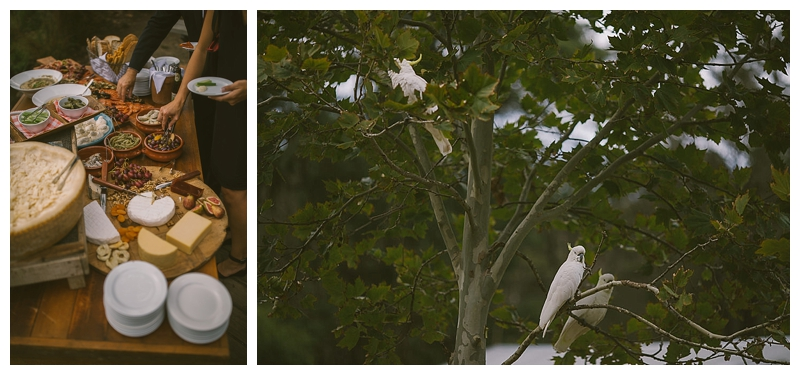 audley dance hall wedding photographer, sutherland shire wedding photographer, bryce and amanda, southern highlands wedding photographer, southern highlands photographer, relaxed wedding photographer, country wedding photographer, grazing table, cockatoos