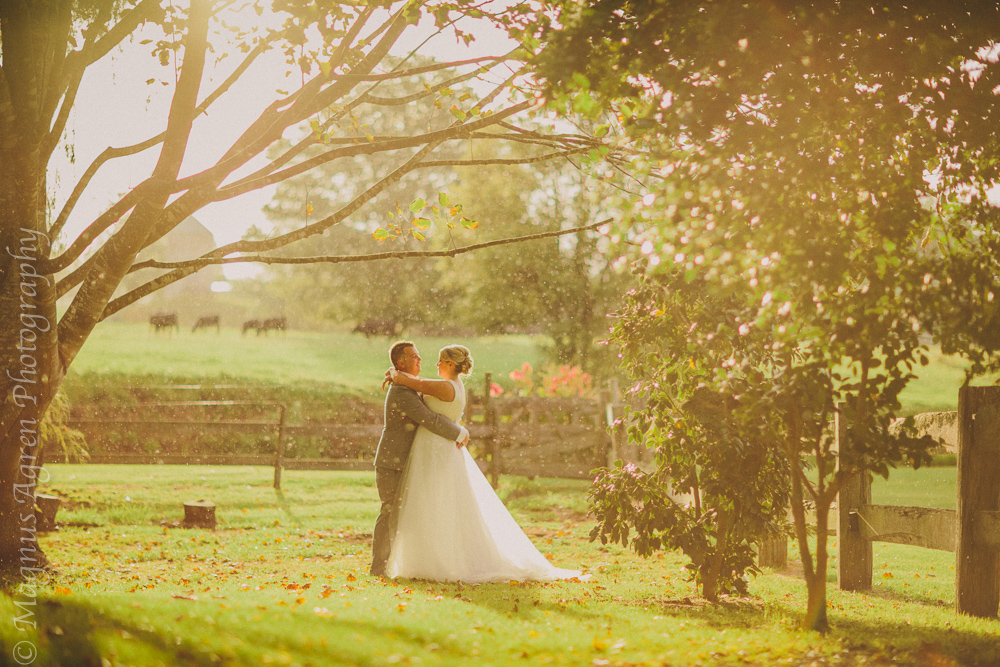 south coast wedding venue, terrara wedding venue, south coast wedding photographer