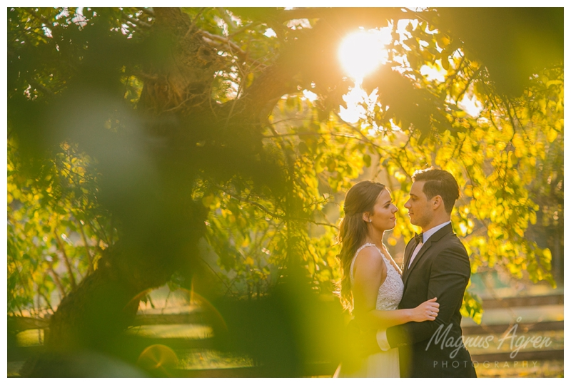 belgenny farm, belgenny farm wedding photographer, southern highlands photographer, goulburn photographer, relaxed wedding photographer