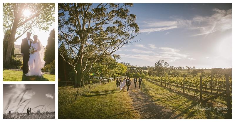 centennial vineyards bowral wedding