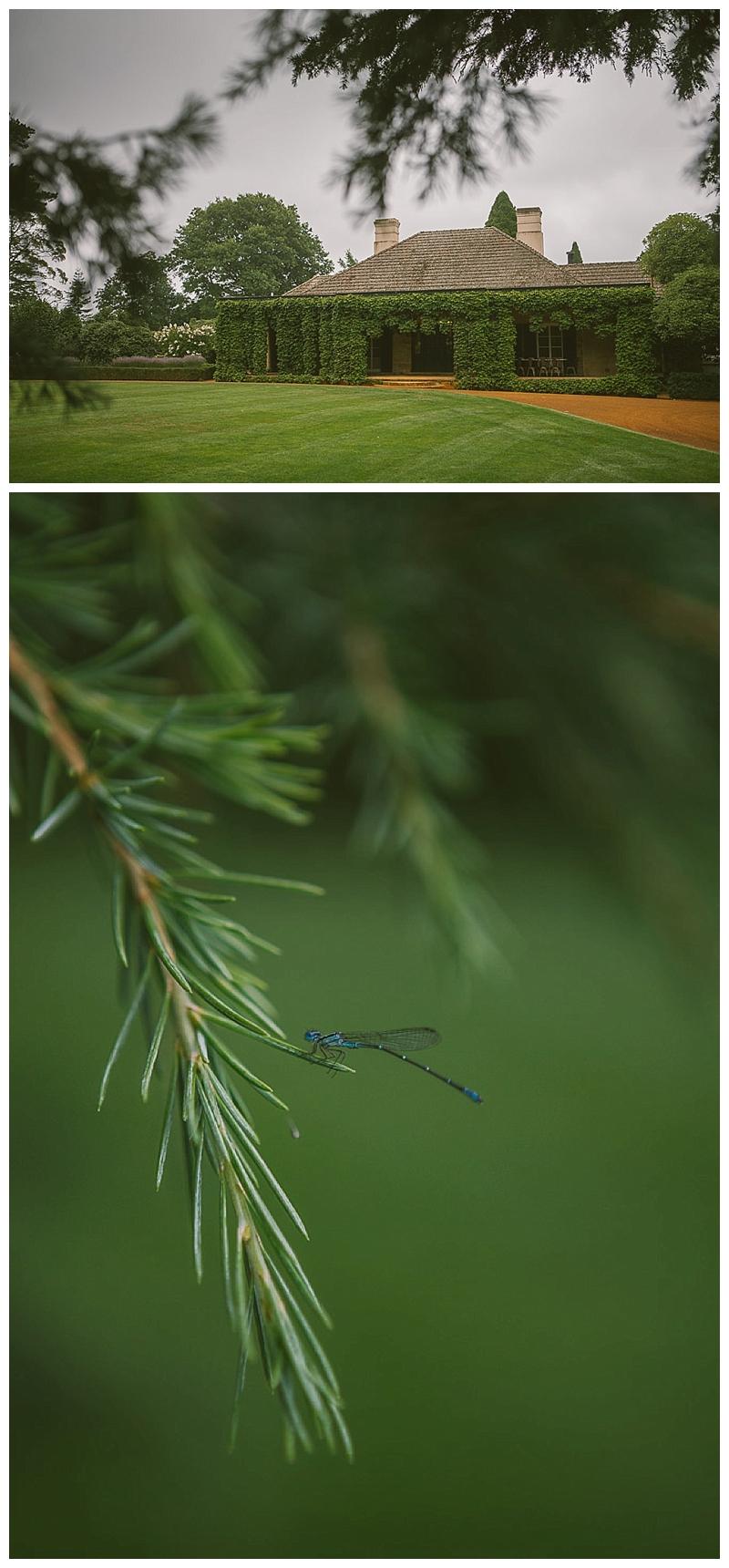 bendooley estate, Berrima, Southern Highlands, wedding, nature, natural, dragon fly