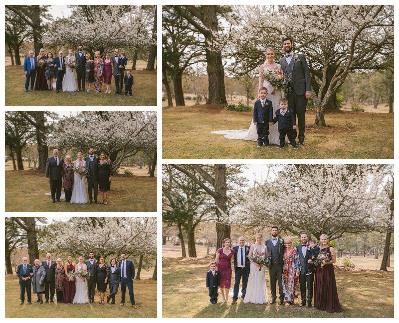 family shoots, just married, family photos , sylvan glen