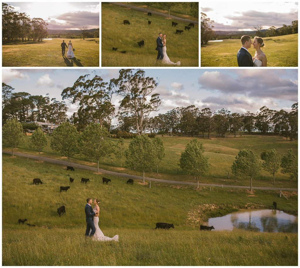 country wedding photographer, southern highlands photographer, goulburn photographer, farm wedding photographer, southern highlands wedding venue