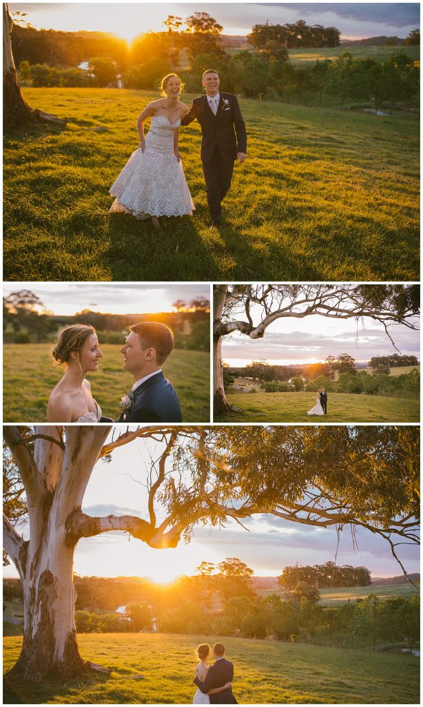 mali brae farm moss vale, southern highlands wedding photographer, sunset wedding photographer, relaxed wedding photographer